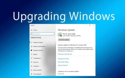 Microsoft Opens Windows 10 May 2019 Update Availability To All Users Manually Checking Windows Update